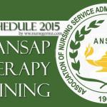 ANSAP IV theryapy training
